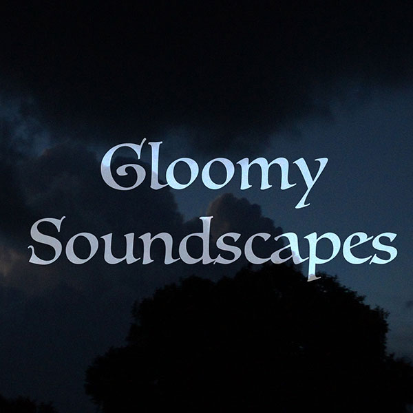 Gloomy Soundscapes - Shawn K  Clement