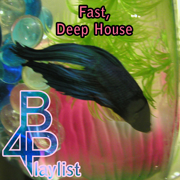 Fast, Deep House - Brian for President